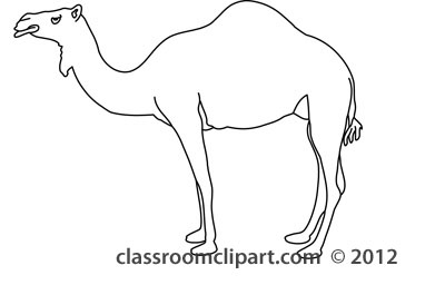 Camel_in_front_of_egypt_pyramids_212_outline.jpg
