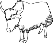 Yak clipart black and white - photo#4