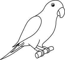 >Search Results for parrot - Clip Art - Pictures ...