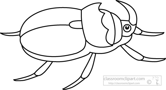 beetle-insects-black-white-outline-clipart-930.jpg