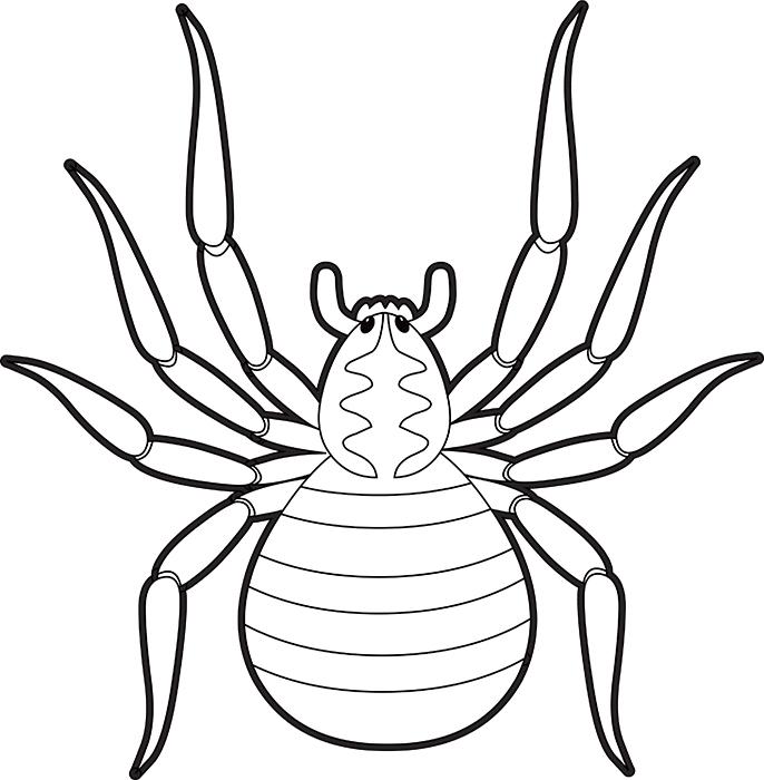 black-white-outline-clipart-of-brown-spider.jpg