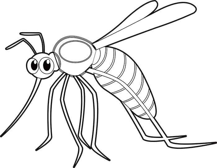 blood-sucking-mosquito-insect-black-white-outline-clipart.jpg