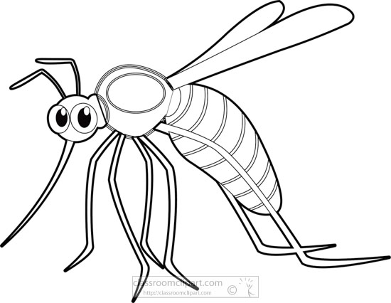 blood-sucking-mosquito-insect-black-white-outline-clipartA.jpg