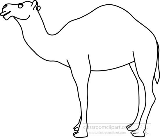 camel_31412_03_outline.jpg