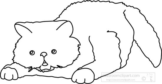 cat_327_2A_outline.jpg