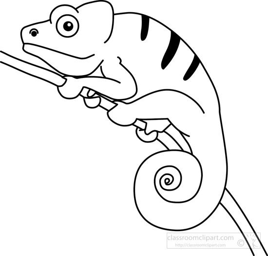 chameleon-on-plant-branch-bw-outline-clipart.jpg