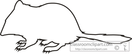 crest_tailed_marsupial_mouse_outline_clipart.jpg