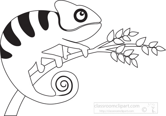 cute-green-chameleon-reptile-clip-art-illustration-black-white-outline-clipart.jpg