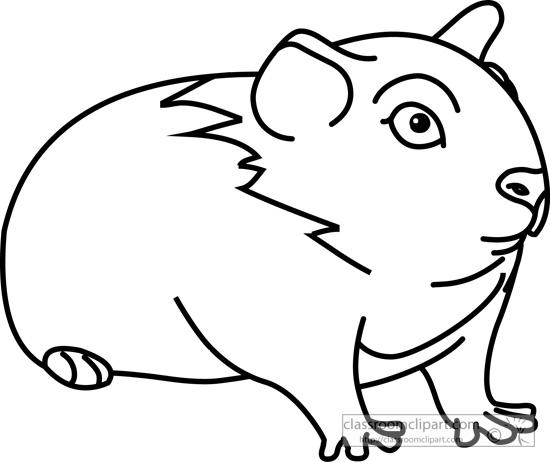 guinea_pig_03_outline_clipart_116.jpg