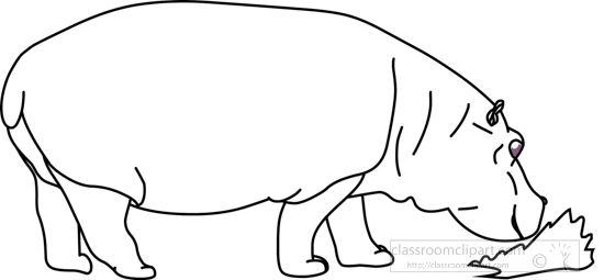 hippopotamus_blue_sky_grass_02_outline.jpg