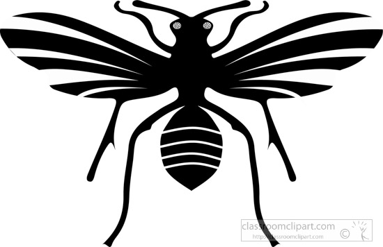 insect-black-white-clipart-24.jpg