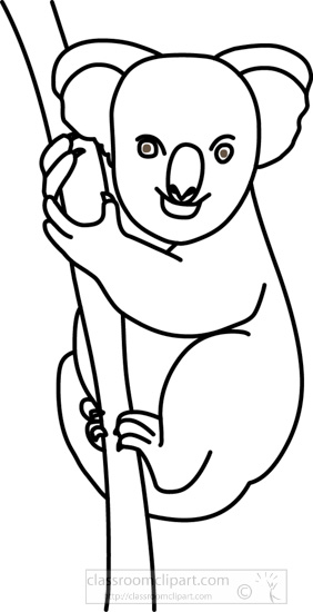 koala_bear_314_04_outline.jpg