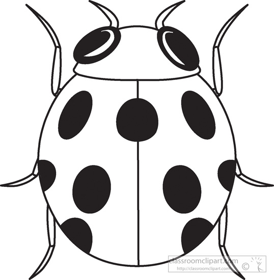 ladybug-insects-black-white-outline-clipart-984.jpg