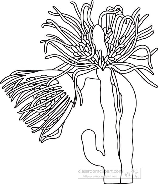 marine-animal-black-outline-clipart.jpg
