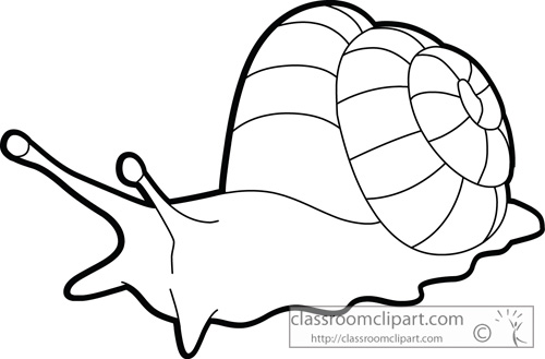 mollusks_giant_land_snail_outline_clipart.jpg