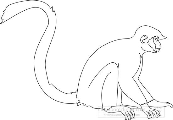 monkey_sitting_01A_outline.jpg