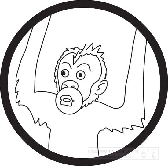 orangutan--outline-05-112.jpg