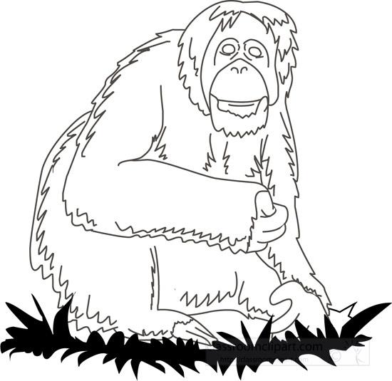 orangutan-03-outline.jpg