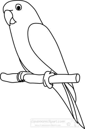 parrot_2_outline_22212.jpg