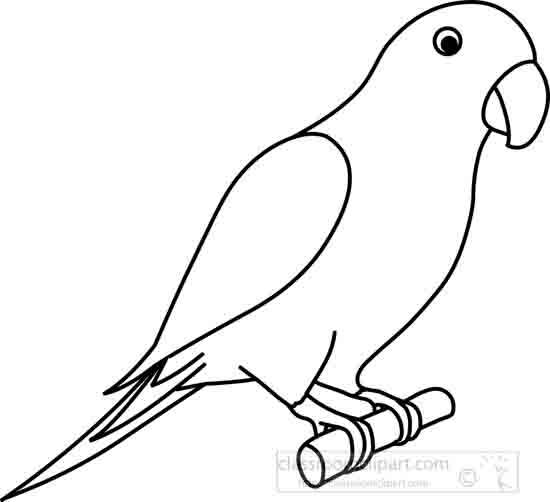 parrot_3A_outline_22212.jpg
