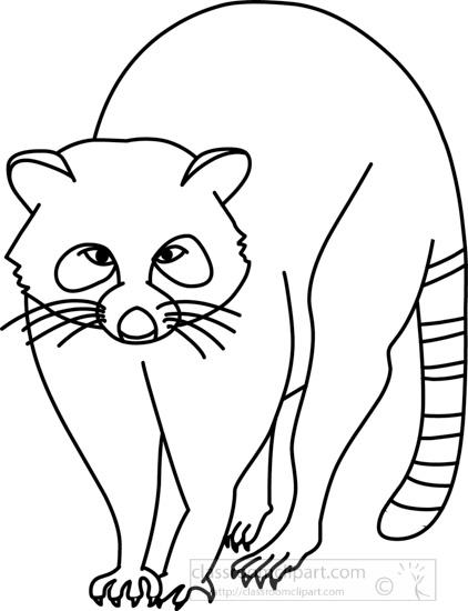 raccoon 312 02 outline jpg  Raccoon Clip Art Black And White
