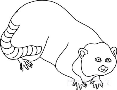 raccoon_clipart_212_7_outline.jpg