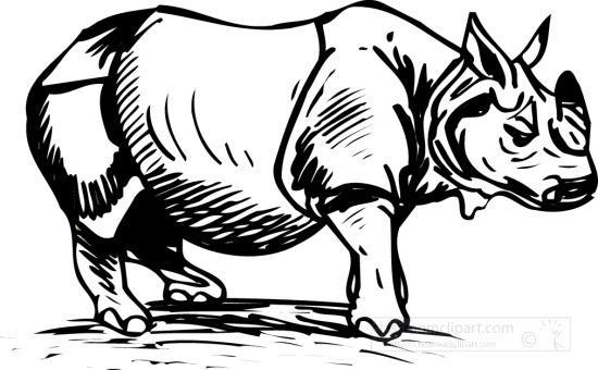 rhinoceros1BW.jpg
