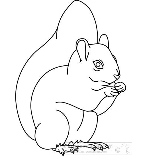 Outline of a Squirrel http://classroomclipart.com/clipart-view/Clipart/Black_and_White_Clipart/Animals/squirrel_314_01_outline_jpg.htm
