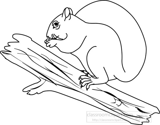 Outline of a Squirrel http://classroomclipart.com/clipart-view/Clipart/Black_and_White_Clipart/Animals/squirrel_314_03_outline_jpg.htm