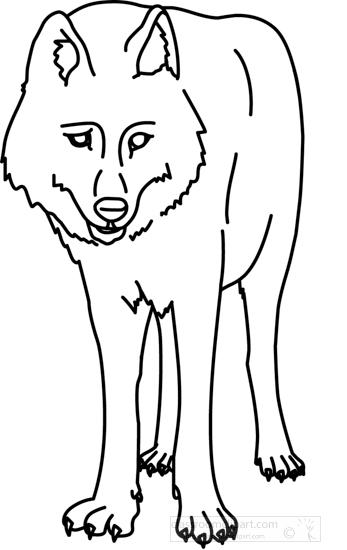wolf_328_05_outline.jpg