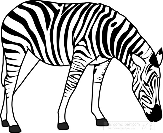 zebra outline drawing - photo #23
