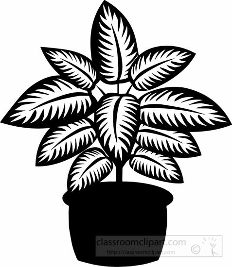 black-white-dieffenbachia-plant-black-white-clipart.jpg