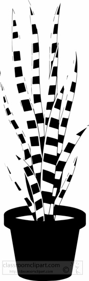 black-white-mother-in-law's-tongue-or-snake-plant-black-white-clipart.jpg