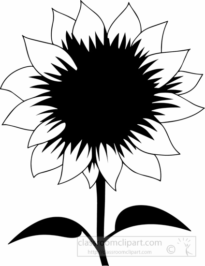 black-white-sun-flower-black-white-clipart.jpg