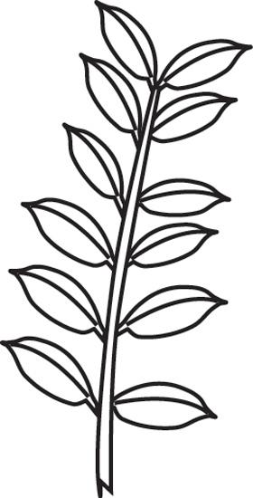 leaf-composition-even-pinnate-outline.jpg