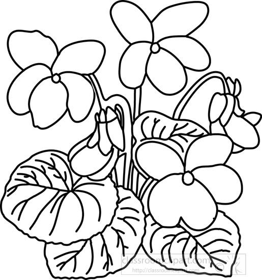 outline-violet-flower.jpg