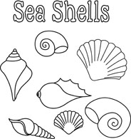 Clip Art Black And White Clipart free black and white outline clipart clip art pictures seashells poster size 88 kb