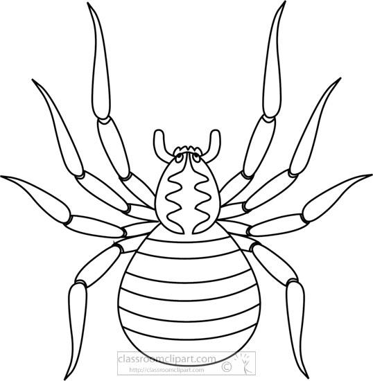 black-white-outline-clipart-of-brown-spider-718.jpg