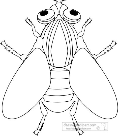 house-fly-insect-black-white-outline-clipart.jpg
