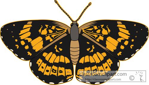 butterflies _silvery_checkerspot_butterfly_2.jpg