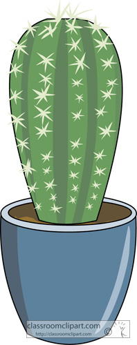 cactus_in_blue_pot_03.jpg