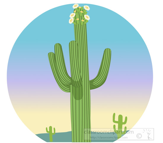 large-saguaro-cactus-with-flowers-clipart.jpg
