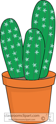potted_cactus_plant_04.jpg