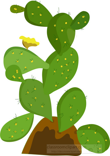 prickly-pear-cactus-plant-with-flower-clipart.jpg