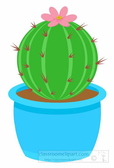 round-barrel-cactus-in-blue-planter-clipart.jpg