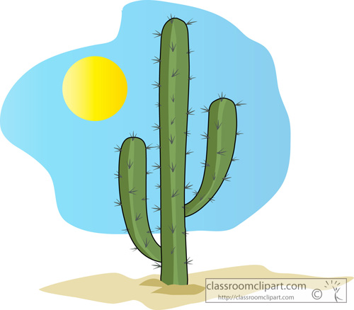 single_green_cactus_05a.jpg