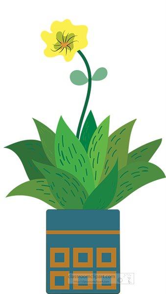 succulent-plant-in-flower-pot.jpg