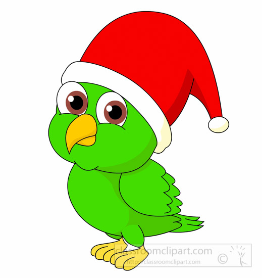 parrot-wearing-christmas-hat-clipart.jpg