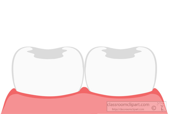 two-teeth-with-gum-dentistry-clipart.jpg