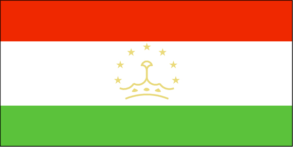 ti-lgflag.jpg